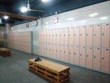 Strumentazione di ginnastica dell'armadio dell'ABS