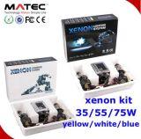 lampe xénon CACHÉE par remplacement de véhicule de xénon de 2X35W D2s/D2c