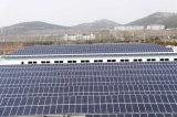 太陽エネルギーPV Panel Polycrystalline Silicon 245W
