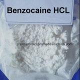 Hidrocloro Anodyne anestésico 23239-88-5 do Benzocaine do HCl do Benzocaine branco do pó