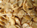 2016 Estación 100% pura conservada Mushroom Pns