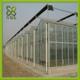 Estufa da folha do policarbonato da alta qualidade com Anti-Fog