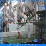 Sale를 위한 직업적인 Halal Style Cattle Slaughter Equipment