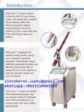 2017 532nm/1320nm/1064nmの入れ墨の取り外しのための最も新しいND YAGレーザー韓国