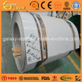 Steel di acciaio inossidabile Coil/Roll (304 304L 316 316L 321)
