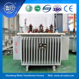 30kVA---transformador amorfo da distribuição do núcleo da liga de 500kVA 10kv do fabricante de China