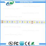 Indicatore luminoso di striscia approvato di CE& RoHS SMD5630 LED con alto luminoso