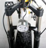 26*4.0脂肪タイヤが付いているハブモーター電気自転車かバイク