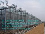 Рамка высокого качества для зеленой дома на самом недорогой от фабрики Китая
