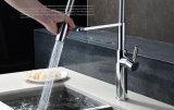 Retirar o Faucet da cozinha da cabeça de pulverizador (HC17318)