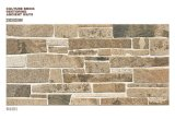 Outdoor Glazed Ceramic Wall Tiles (63901)