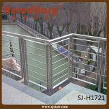 Diseño de acero de la terraza del pasamano del acero inoxidable (SJ-637)