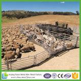 Iarda poco costosa galvanizzata del bestiame per il servizio dell'Australia