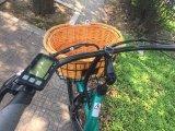 Bicyclette électrique 500W 48V de montagne pneu américain de type de gros