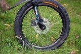 2016 das elektrische Fahrrad des neuer Motor250w, preiswertes faltendes Fahrrad