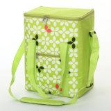 O saco ao ar livre o mais novo do refrigerador do piquenique (YSCB00-0165)