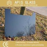 Vetro temperato personalizzato alta qualità per il vetro dell'elettrodomestico