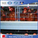 Machine à cage de batterie à couche de poulet