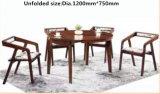 Faltbarer Aschen-festes Holz-Speisetisch und Stühle