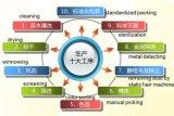 ممتازة ينشّف [غجي] عنّبيّ من [نينغإكسيا], الصين