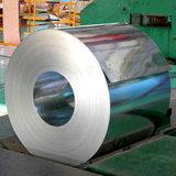 304/316 placa de acero inoxidable con el molino directo