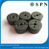 Magnete di ceramica del ferrito per il motore facente un passo