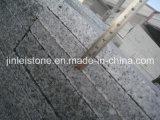 Precortada G603 gris granito del pavimento por Oudoor Plaza Proyecto