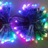 Pixel LED 50PCS reiht LED-Weihnachtszeichenkette-Lichter auf