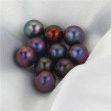 Snhの新しい方法はあいた緩み弾の真珠の半分を培養した