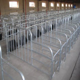 HighqualityのブタIndustry Equipment/Pig Breeding Equipment/Sow Crate