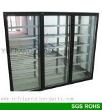 Camminata in Freezer Glass Door