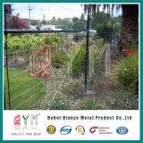 熱い浸された電流を通された鉄の農場の塀の繁殖の塀