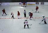 La mayoría del suelo profesional de la corte del hockey en el azulejo de Asia y del hockey (profesional de Hockey-Champion/)