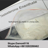 injizierbares Testosteron 100g Enanthate Steroid rohe Puder-Anlieferung 100%