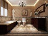 Gabinete de banheiro novo do estilo 2017 (wy-001)
