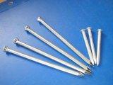Clous en fer poli ou galvanisé avec qualité élevée