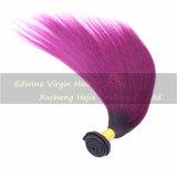 7A等級の中国の人間の毛髪2toneカラーT1b/Purple毛の束
