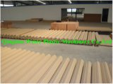 Sjsz-65/132 Wood Plastic WPC Profile Production Line für Decking