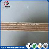 공장 제조 18mm 고품질을%s 가진 상업적인 유칼리나무 합판
