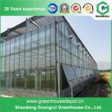 Première serre chaude commerciale en verre luxuriante de Venlo avec la qualité