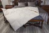 贅沢の子供のための100%年のEgyptionの綿の寝具カバー