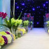 Présentoirs acryliques pour des stands de fleur de pièces maîtresses