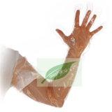 Wegwerf-PET langer Hülsen-Handschuh-Haushalts-Plastikveterinärhandschuh