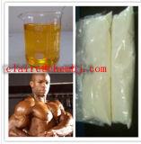 Устно анаболитные стероиды Winstrol цикла вырезывания для мышцы приобретая Winny