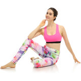 O estilo novo colorido elegante ostenta calças das mulheres para ioga Running Legging