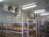 Koude Zaal van de Koude Opslag van het restaurant de Commerciële, Gang in Ijskast, de Zaal van de Diepvriezer