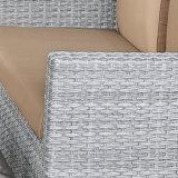 Мебель отдыха установленной комбинации софы ротанга искусствоа ткани напольная