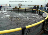 Rete da pesca che fa la gabbia dei pesci della macchina