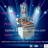 De multi Machine van het Sluiten van de Schroef van de Post Multi Hoofd Automatische met AutoOmwenteling