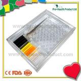 Transparentes Stöpsel-Prüfungs-Modell (pH6103B)